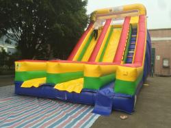 Giant 2 Lane Slide or Water Slide Wet/Dry