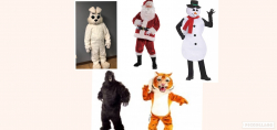 Costumes  - Choice - $35