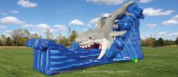 Gone Fish'N Slide - Dry