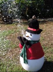 Snowman Snow Machine - $300