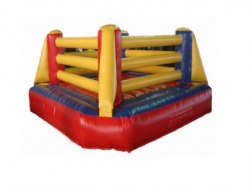 *** NEW *** Boxing Ring $395