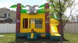 Jungle Jumper with Slide