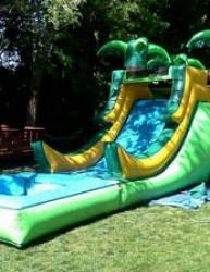 Jungle Jumper Slide and Pool Combo