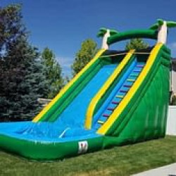 The Jungle Slide With Pool