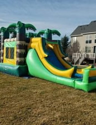 output 1619026616 Jungle Jumper Slide and Pool Combo