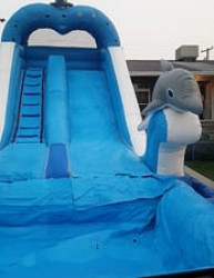 The Dolphin Waterslide