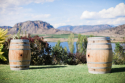 Oak Wine Barrel hire