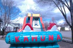 17' Tall Big Kahuna Giant Slide