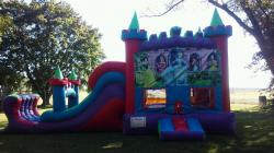Disney Princess colorful castle combo(Dry)