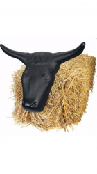 Bull Rope'n Toss