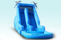 20FT Dolphin Water Slide  (34x11x20)