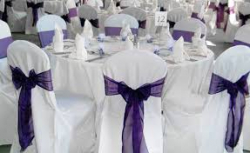 Chair Cover - Purple Bow