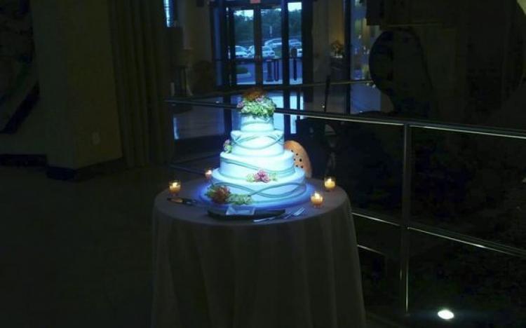 Cake Spotting