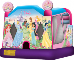 DISNEY PRINCESS COMBO 4 in 1