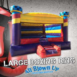 Large Boxing Ring