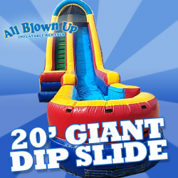 20' Giant Dip Slide