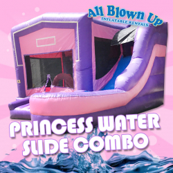 Princess Water Slide Combo