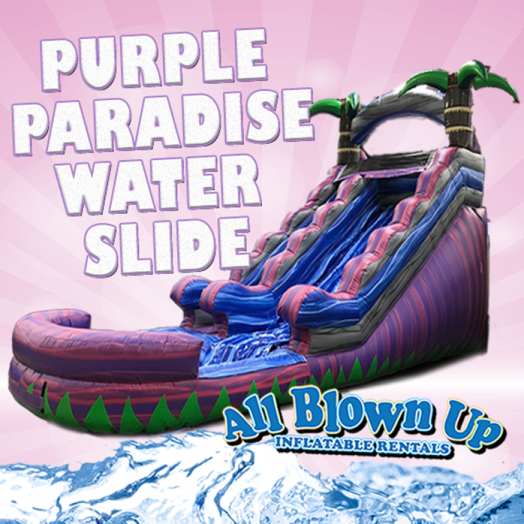Purple Paradise Water Slide
