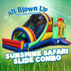 Sunshine Safari Slide Combo