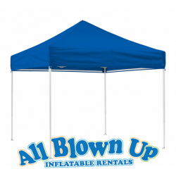 10'x10' Easy Up Canopy