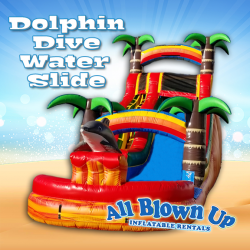 Dolphin Dive Water Slide
