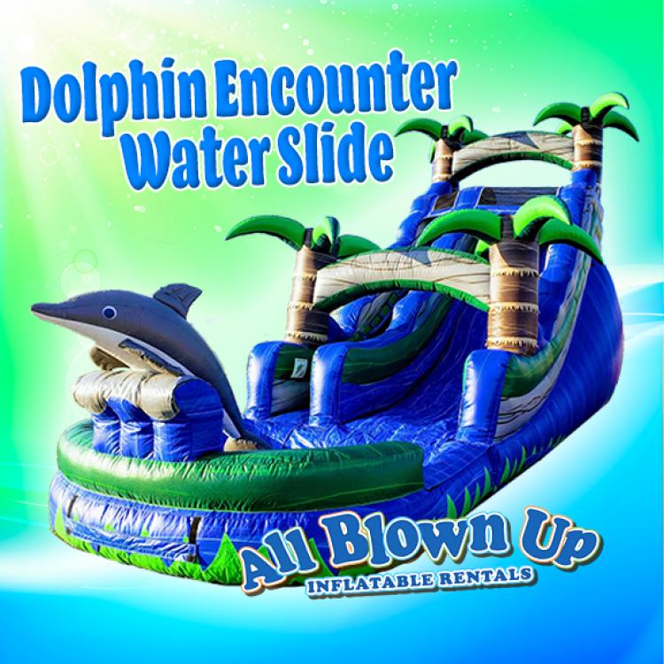 Dolphin Encounter Water Slide