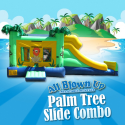 Palm Tree Slide Combo