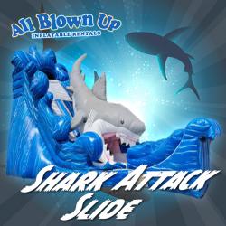Shark Attack Slide