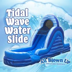 Tidal Wave Water Slide