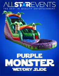 Purple Monster Slide