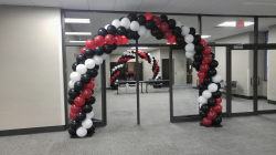 Balloon Arch - Standard Indoor