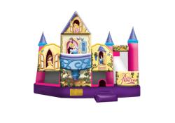 Indoor Facility Disney Princess Combo