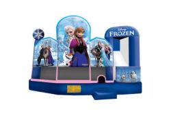 Indoor Facility Disney Frozen Combo