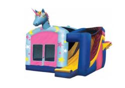 Indoor Facility Unicorn Palace Combo
