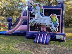 Dazzling Unicorn Combo