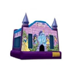15' Disney Princess Square