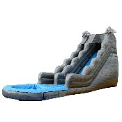 20' Dolphin Water Slide