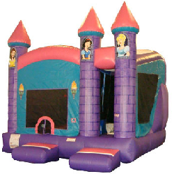Princess Bounce and Slide