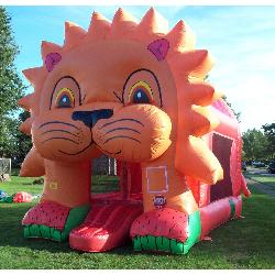 Lion Bounce - $165