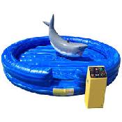 Mechanical Shark incl 1 staff