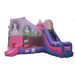 Princess Combo with Slide