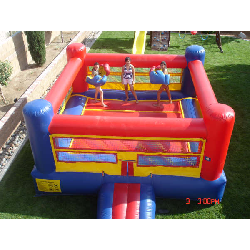 Bouncy Boxing Ring (including Gloves)