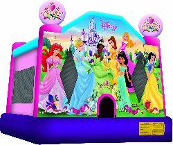 Disney Princess Jumper