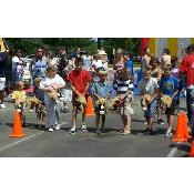 Stick Horse Races