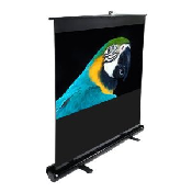 8-ft Indoor Screen
