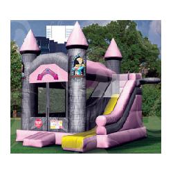 4-1 Pink Castle