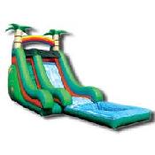 18' Tropical Slide w/ Pool