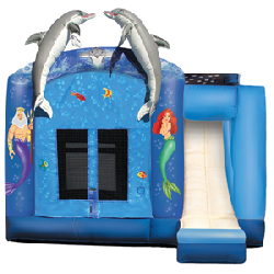 4-in-1 Under the Sea Combo - $225
