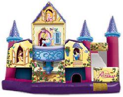 Disney Princess 5-in-1
