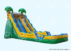 20ft Tall Dual Lane Tropical Slide